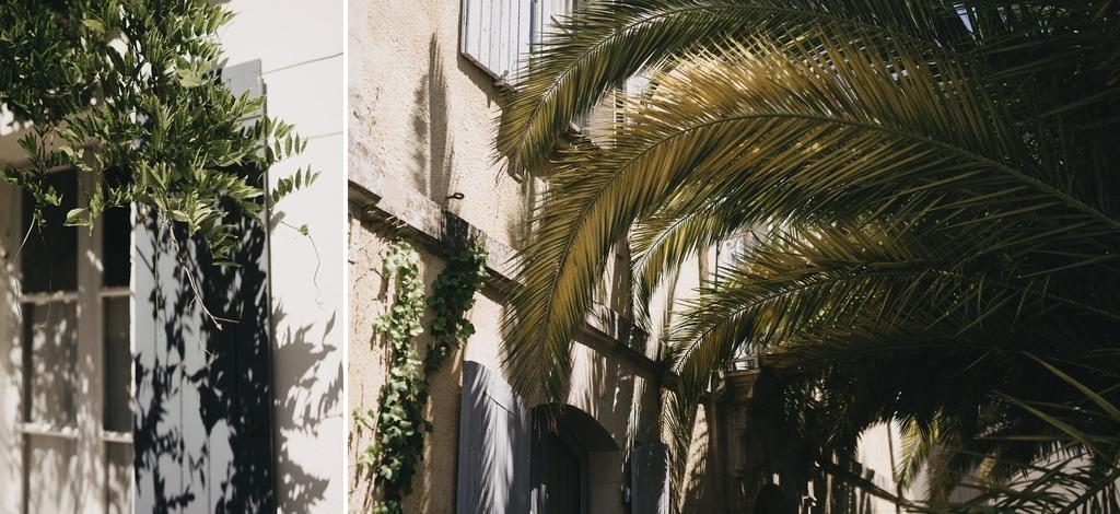 palmier Noirmoutier volets glycine soleil