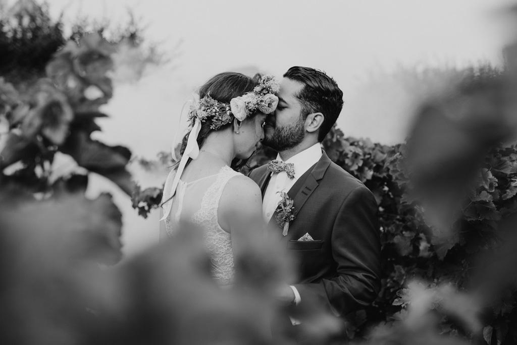 mariés noir et blanc s'embrassent vignes