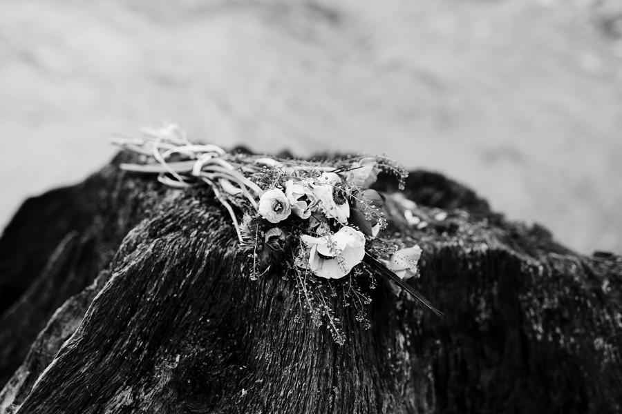fleurs sur rocher noir et blanc Mervent
