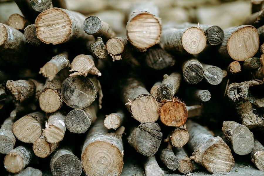 motifs bois tronc stère défi coronavirus confinement covid-19