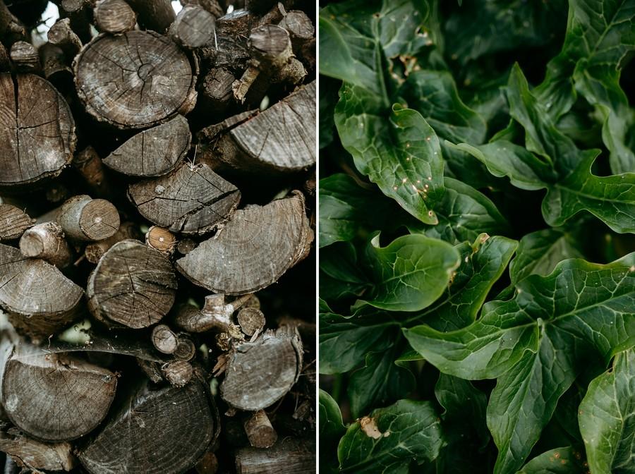 motifs bois tronc stère feuilles arum sauvage défi coronavirus confinement covid-19