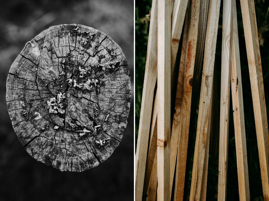 motifs tronc coupé champignon souche liteaux défi coronavirus confinement covid-19