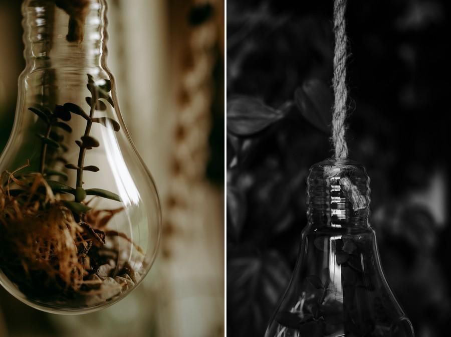 ampoule verre terrarium reflets lumière défi coronavirus confinement covid-19