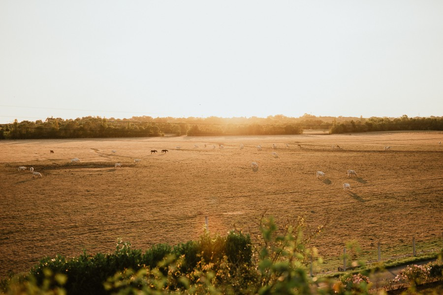 paysage marais Lairoux Vendée fin de journée