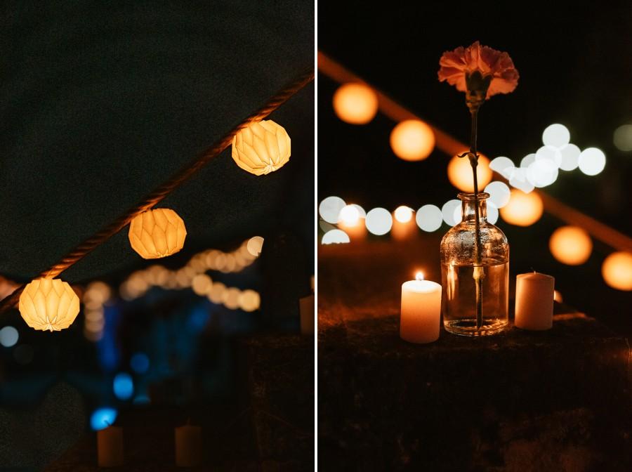 guirlandes lumineuses oeillet vase